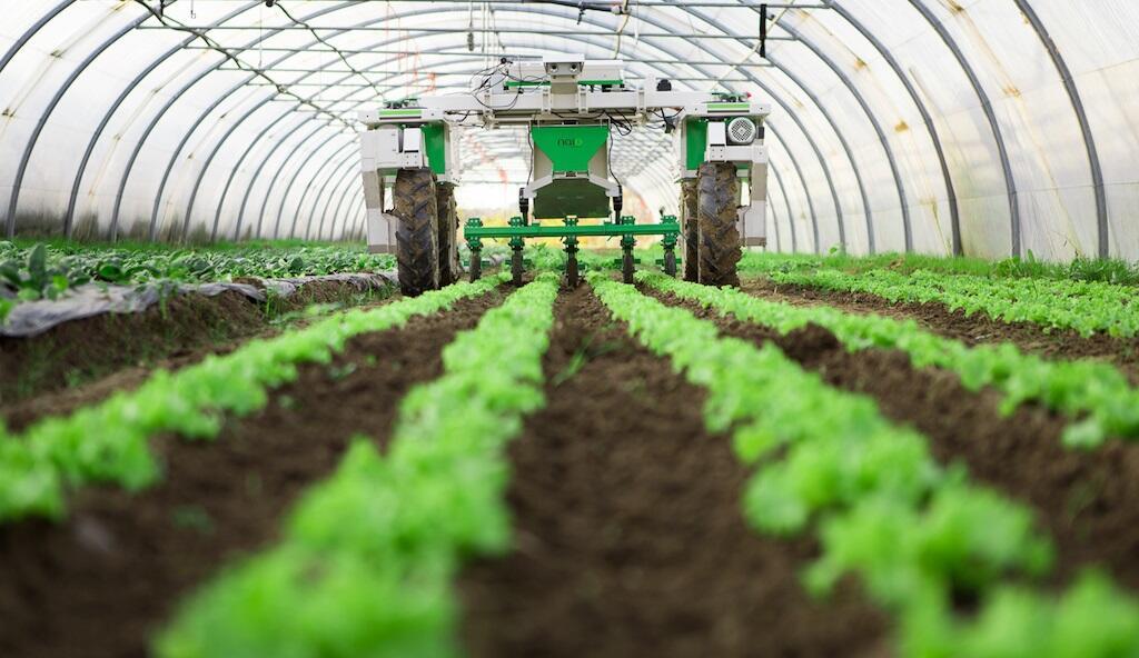أنظمة إدارة الثروة الزراعية
